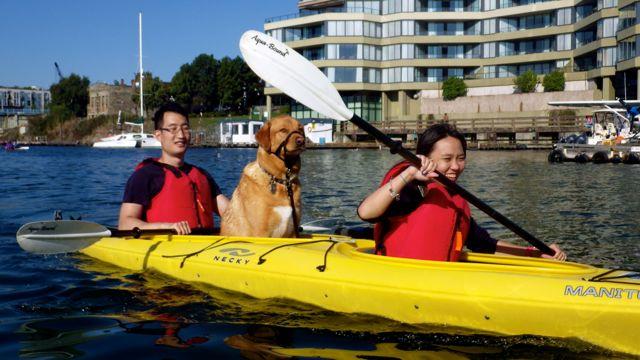 Victoria Kayak Rentals
